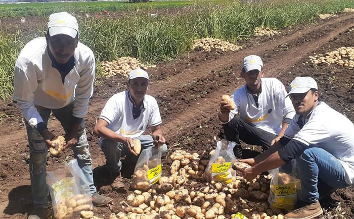 Banin' Volunteers from Sahel Akkar